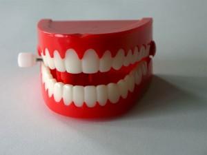 Photo of plastic teeth