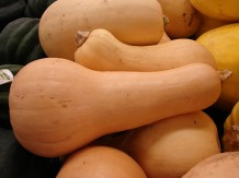 Photo of butternut squash