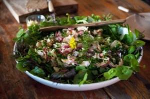 Photo of Trill Farm salad
