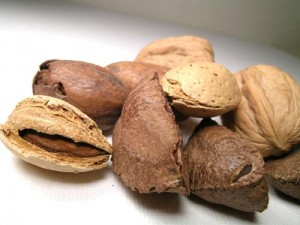 Photo of nuts in their shells