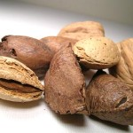 Photo of tree nuts