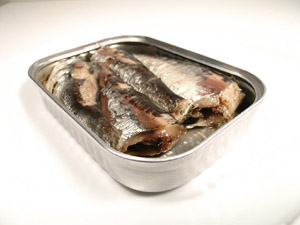 Photo of sardines in a tin