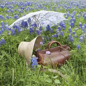 photo of a suitcase in a field of flowers