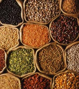 Photo of open bags of pulses