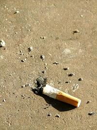 Photo of stubbed otu cigarette