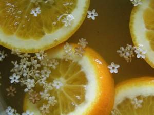 Photo of elderflower cordial mixture