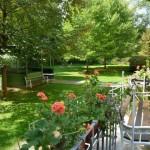 Photo of a hospital garden