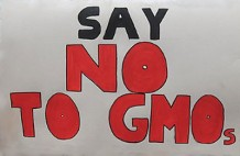 Photo of a sign protesting against GM