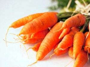 Photo of a bunch of carrots
