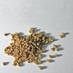 Photo of fenugreek seeds [Image: Rilke -wikimedia Comons]