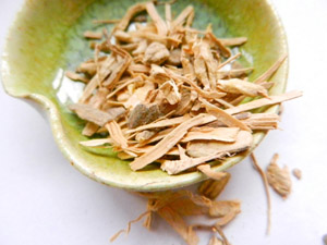 Photo of kava root