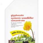 Photo of a bottle of glyphosate week killer