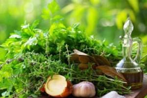 Photo of fresh herbs