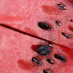 Close up photo of a watermelon