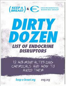 Photo of the cover of the Dirty Dozen endocrine disrupters guide