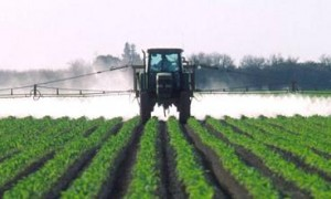 Photo of a field being sprayed with pesticides
