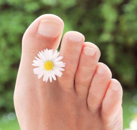 Photo of a foot with a daisy flower between the first and the second toe