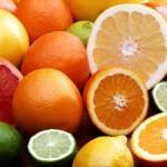 Photo of citrus fruits