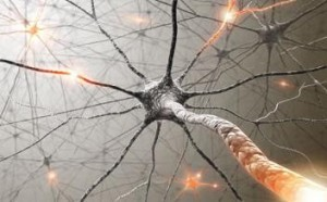 Illustration of brain synapses