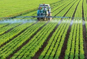 Photo of glyphosate being sprayed on a field