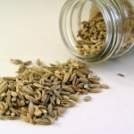 Photo of fennel seeds spilling out of a jar