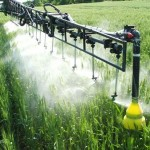 Photo of fungicides being sprayed on a wheat crop