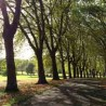 Photo of Gladstone Park, London