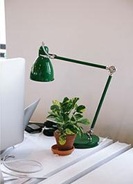 Photo of a plant on a desk