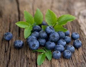 Photo of bilberries