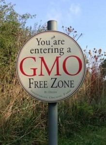 GMO free zone sign at Sheepdrove Organic Farm, Berks