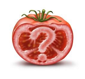photo of a gmo tomato