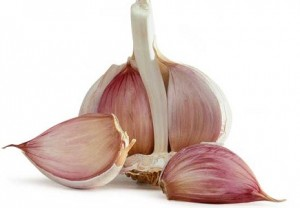 photo of garlic bulb