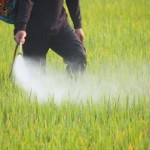 Photo of pesticides being sprayed on a field
