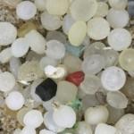 photo of microbeads