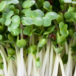 Broccoli sprouts are particularly high in immune-enhancing sulforaphane.